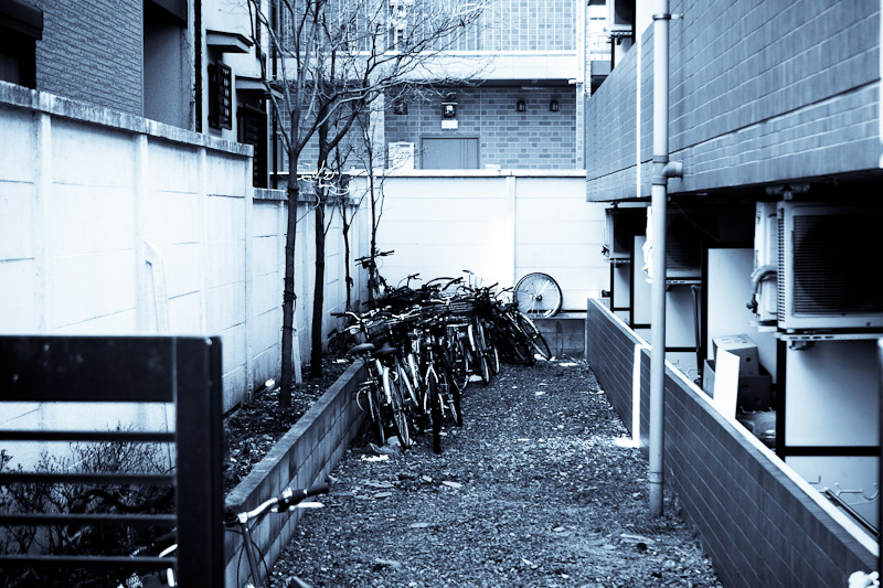 bicycles_398630735_o
