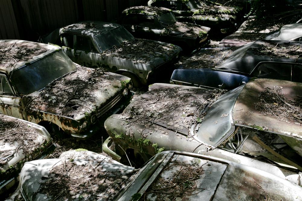 autofriedhof-kaufdorf-6401