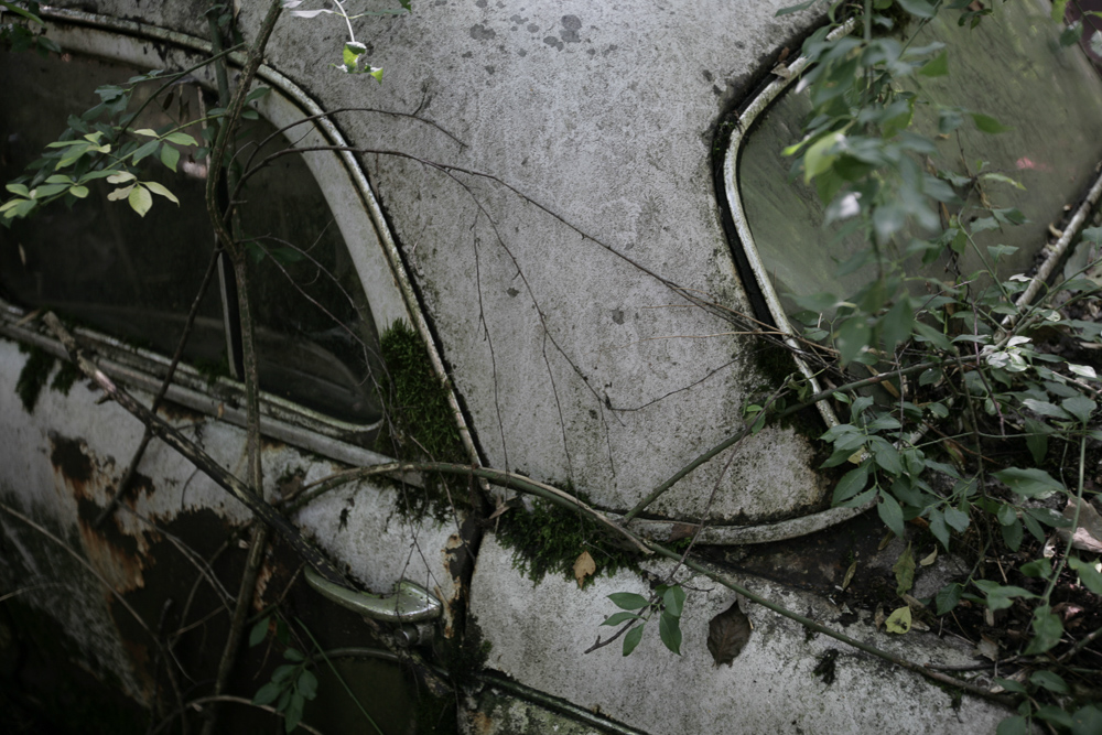 autofriedhof-kaufdorf-6599