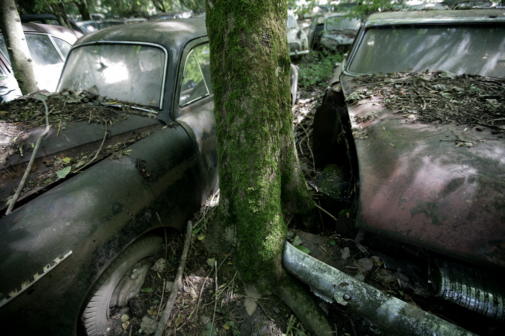 autofriedhof-kaufdorf-6676
