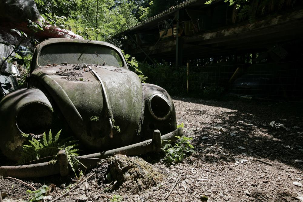autofriedhof-kaufdorf-6680