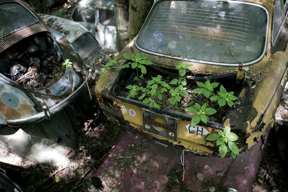 autofriedhof-kaufdorf-6681